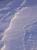 Ripples in the Snow #1